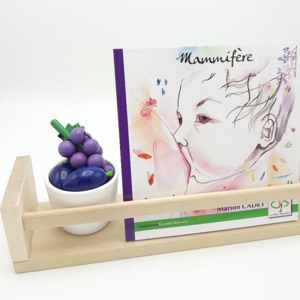 L'album Mammifère, de Marion Cadet, sur une étagère